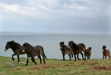 Exmoor and the Bristol Channel